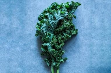 August Recipe – Kale Chips